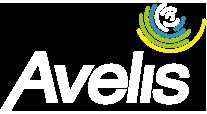 Avelis Conseil – Formations et Conceptions Sujets